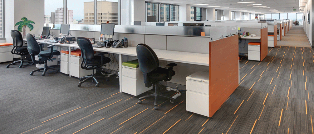 Commercial Wool Carpet Pros and Cons