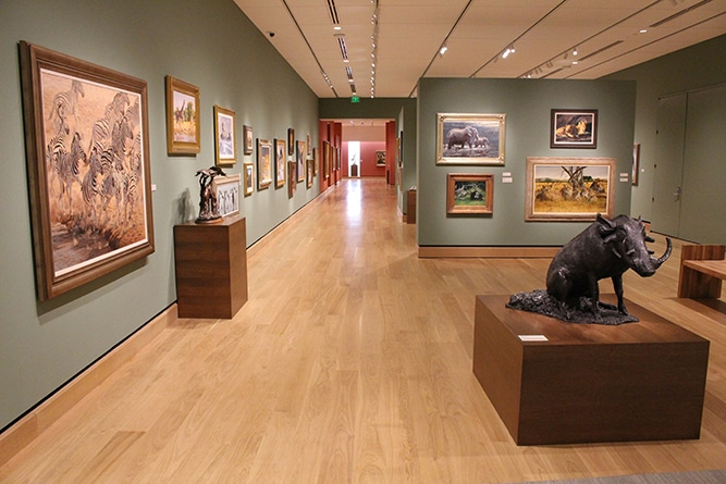 Museum Flooring Project: The James Museum